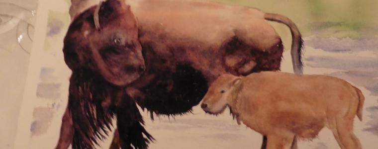 Artwork by Roberta Calder
